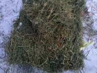 Here green Alfalfa hay from michigan to Georgia by semi