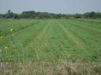 FRESH CUT ALFALFA BALES, PLACE YOUR ORDER NOW CALL RIC