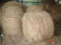 4ft x 4ft Round Alicia Hay Bales dry barn kept only 20