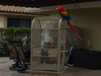 All acrylic Folse bird cage with airholes on top and