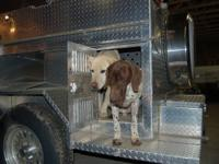 Aluminum Dog Hunting Trailer 6 bay can haul up to 12