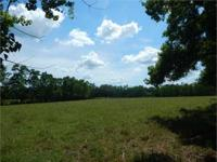 24 acres of beautiful fenced pasture with pond and