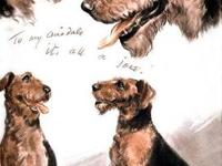 Boxer Vintage print from Diana Thorne's Dogs This