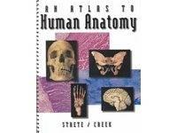 An Atlas to Human Anatomy by Dennis Strete and