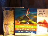 Essentials of Human Anatomy & Physiology Ninth Edition