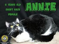 Annie's story You can fill out an adoption application