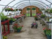 All remaining hanging baskets, annuals and vegetable