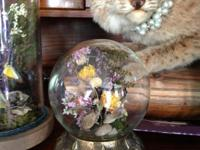 Beautiful Victorian inspired taxidermy display domes.