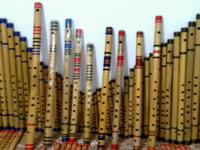I am flute maker base flute any kind of professional as