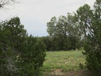 We have two beautiful adjoining 1.67 Acre Treed parcels