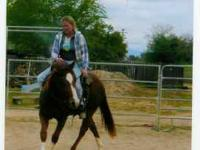 I have a nice pretty AQHA 5yr old mare that was started