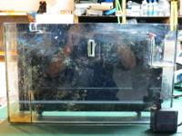 "For sale is an Aquafuge 19"" refugium that hangs on the"
