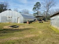 40'X123' Greenhouse, thousand plus fish -- many ready
