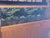 125 gallon aquarium no cracks no leaks, wood stand