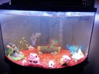 FIFTY gallon aquarium w stand. Is a corner storage