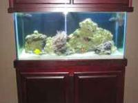 90 gallon RR tank with custom cherry finshed extra high