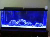 """I have two 24"""" fixtures for a 55 gallon (48"""" long)"""