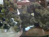 2 Large rocks for fish tank... First 20 takes it...