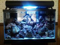 I have a 37 gallon aquarium for sale. That comes with