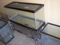 For sale numerous aquarium fish tank for critters, 5,
