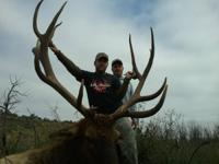 Archery Elk Hunt with dinner and lodging in Colorado