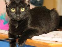 Ariel's story I am a sweet and affectionate girl