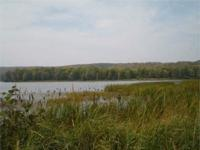Otter Lake Landing! This lovely 9.96 acre parcel has