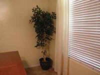 Two artificial trees. Great condition. $10.00 each.