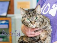 Astrid came to the shelter because her owner passed