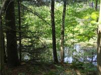 Great Hunting on this 20-Acres with Creek running