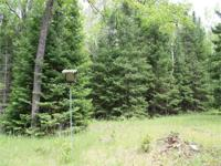 Awesome hunting property with trails and mixture of