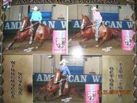 I have 2 barrel racing horses for sale please call for