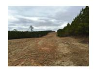 This 293 acre tract is located in Auburn, AL; it is