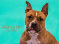 AUTUMN's story Meet Autumn! I am a super sweet gal with
