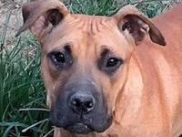 Azalea B Lower fee's story Please contact Vickie