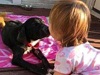 Baby's story Baby is a very sweet puppy who had a rough