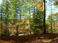 LOVELY WOODED LAND WITH well and septic and power in