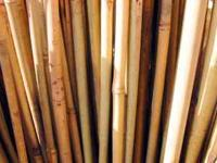 bamboo poles $3.00 per pole.these poles range in size