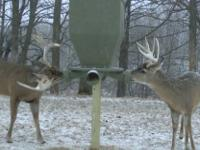 Banks FeedBank Deer Feeders. The Feedbank feeders can