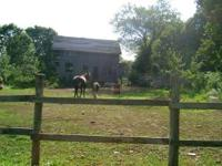 barn available. good for 1-2 horses. $200 monthly. have