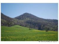 Mountain Estate - Multiple Vie Picturesque mtn estate!