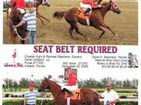 Seat Belts Required 2006 Sorrel Mare. Sire is Copper