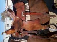 "14"" barrel saddle, great condition, new metal stirrups."