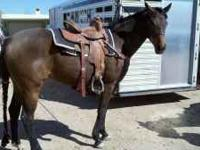 14'' Barrel Saddle in good condition. Western Star