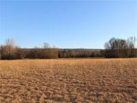 251 Acres m/l excellent pasture land. Poteau River