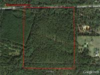 42+/- ACRES ON BERTHA CLEVELAND ROAD IN BAY MINETTE,
