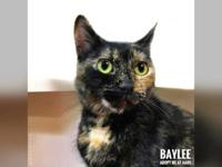 Baylee's story Hey there! My name is Baylee! I'm a