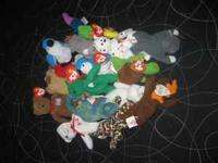 large lot of beanie babies - 80 total - 64 beanie