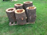I have some logs hollowed out for bear bait, they are