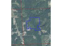 OWNER SAYS TO MAKE AN OFFER! Secluded hunting tract or